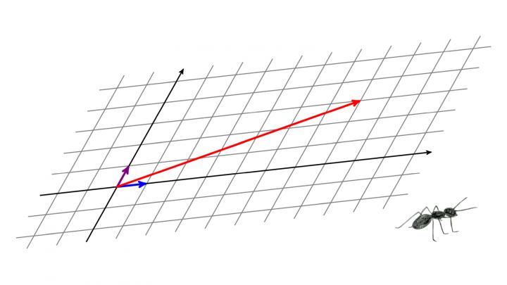 DG 2019-06-11 01 Die Länge von Vektoren in verzerrten Koordinatensystemen